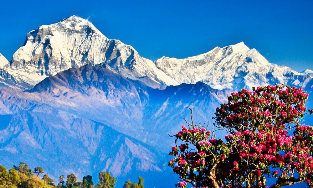 Ghorepani - Poon-hill Trek